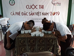 42 samples registered for Qualifying Round of Vietnam's Specialty Coffee Competition 2019